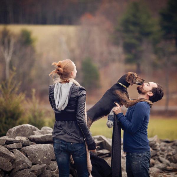 dog-friendly-lodges