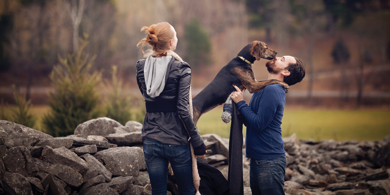 dog_friendly_header